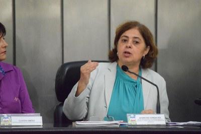 Audiência pública debate Mapa da Violência Contra a Mulher (6).jpg