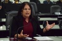 Fátima Canuto solicita retomada do programa de Cestas Nutricionais para gestantes
