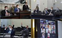 Plenário analisa vetos à lei de criação do Serviço Voluntário de Plantão