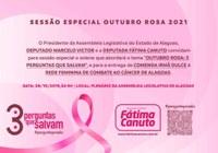 """Sessão especial irá debater """"Outubro Rosa"""" e fazer homenagem à Rede Feminina de Combate ao Câncer"""